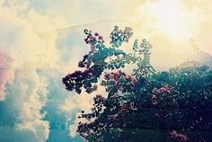 Light, atmosphere, clouds, and colors.  Love this!  Want it on my wall.