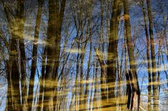 Illusions by Claude Charbonneau on Illusions, Reflection, Abstract, Artwork, Photography, Summary, Work Of Art, Photograph, Auguste Rodin Artwork