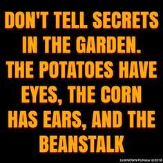 """I love """"corny"""" jokes. Quotable Quotes, Funny Quotes, Life Quotes, Funny Memes, Qoutes, Funny Garden Quotes, Garden Sayings, Beer Quotes, Badass Quotes"""