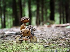 Shop Acorn Elf riding the bike Postcard created by Dubanci. Personalize it with photos & text or purchase as is! Crafts To Do, Fall Crafts, Christmas Crafts, Acorn Crafts, Pine Cone Crafts, Little Acorns, Deco Nature, Arte Horror, Nature Crafts