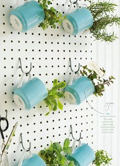 Pegboard Herb Garden | Fun and Easy Indoor Herb Garden Ideas