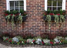 Window boxes--for the back windows