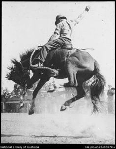Bronc rider...looks like the 1930's