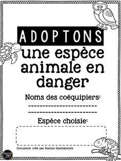Idée adopter un animal et description
