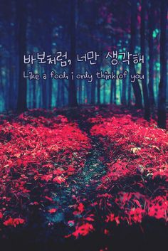 Like a fool, i only think of you (바보처럼, 너만 생각해)