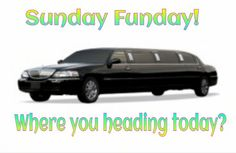 Incognito Limousine and Party Bus 586.871.8325