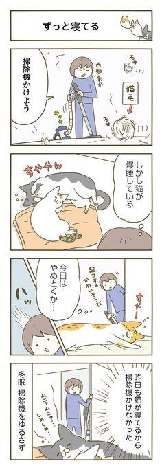 Animals And Pets, Cute Animals, Cat Comics, Comic Strips, Neko, Japan, Cartoon, Manga, Cats