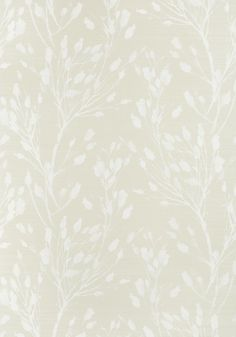 WILD FLOWER, Beige, T27023, Collection Natural Resource 3 from Thibaut Flower Wallpaper, Of Wallpaper, Wallpaper Ideas, Girls Pad, Natural Resources, Wallpaper Samples, Wild Flowers, Botanical Prints, Pretty In Pink