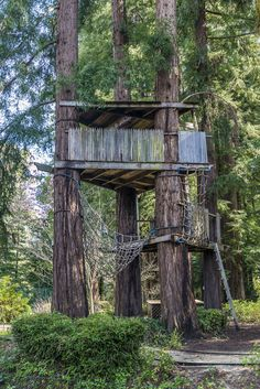 Kids Treehouse #backyards