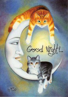 Lune et chats