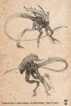 ArtStation - ALIEN KING sketches I did for Sideshow Collectibles, Amilcar Aldana Fong