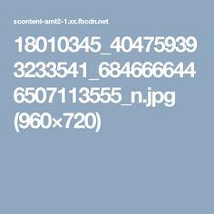 18010345_404759393233541_6846666446507113555_n.jpg (960×720)