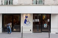Cat Cafe Paris- the first in its kind opens its doors in Paris