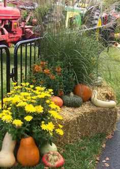 Creative Outdoor Decorating for the Fall and Autumn, ideas for outside fall decorating, fall gardens