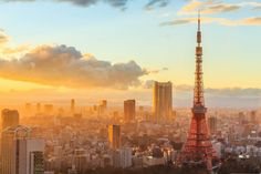 The Best Travel, Food and Culture Guides for Japan - Local News & Top Things to Do