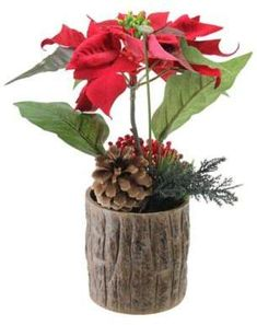 Artificial poinsettia with pine cone and berries decorative potted plant. Make your home merry and bright. Features a brown faux wooden pot has red berries. Recommended for Indoor Use. Pot Measures 10 inches high by 8 inches wide by 5 inches deep. Silk Plants, Potted Plants, Indoor Plants, Small Artificial Plants, Artificial Flowers, Plant Wall, Plant Decor, Miraculous, Poinsettia Plant