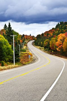 Buy Fall Highway by DISABLED_elenathewise on PhotoDune. Fall scenic highway in northern Ontario, Canada Indian Summer, Beautiful Roads, Beautiful Scenery, Colorful Trees, Fine Art Photography, Planer, Places To See, Photo Art, Country Roads