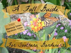 TSG: A Fall Guide For Southern Gardeners