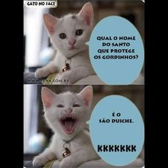 Spread Humour Over The World Funny Texts, Funny Jokes, Hilarious, Gato Do Face, Funny Images, Funny Photos, Funny Animal Memes, Lol, Quotes