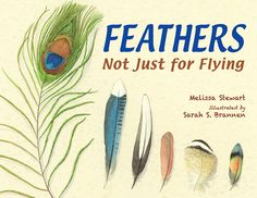 The Nonfiction Detectives: Feathers: Not Just for Flying.  Kids will enjoy learning about how different species of birds use their feathers. Brannen's gorgeous watercolor illustrations will make readers think they are looking at real feathers.