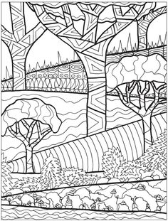 Creative Haven Into the Woods : A Coloring Book with a Hidden Picture Twist | Dover Publications