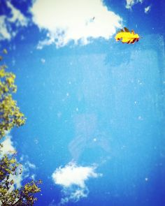 Things happen for a reason #flowleaf2015 #leaves #sky #clouds #beautifullight