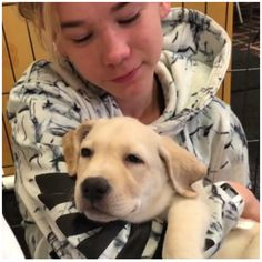 the dog is like your strangling me help Marcus! Cute Twins, M Photos, Great Friends, Handsome Boys, Love Of My Life, True Love, Cute Dogs, Labrador Retriever, Fangirl