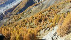 Autunno ai piedi del Monte Bianco