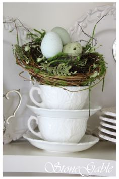 eggs in a tea cup nest. write on the eggs: Mr & Mrs
