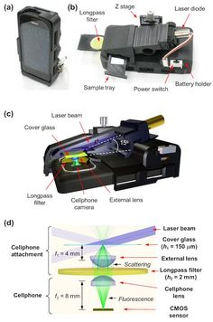 Scientists create portable smartphone 'microscope' - www.healthcoverageally.com