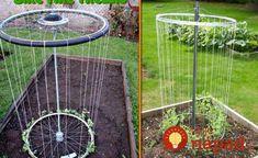 15 Inspiring DIY Trellis Ideas For Growing Climbing Plants 15 Inspiring DIY Garden Trellis Plans,Des Diy Trellis, Garden Trellis, Trellis Ideas, Bean Trellis, Bamboo Trellis, Potager Garden, Garden Landscaping, Tire Garden, Landscaping Ideas