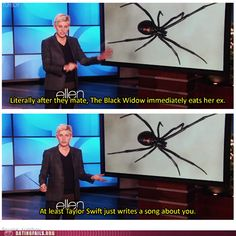 ahhhhh! I love Ellen! I wonder what Taylor would say if she was on the show again...