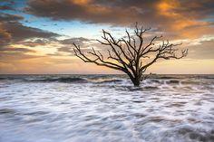 Boneyard Beach Sunset - Botany Bay Edisto Island