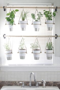 DIY Indoor Hanging Herb Garden - Learn how to make an easy,   budget-friendly hanging herb garden for your window. It will make your   house prettier and fill your gardening void during winter months.