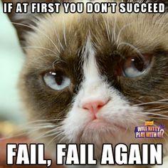 FAIL!!! | Grumpy Cat Strikes Again! | » RealGrumpyCat.tumblr.com