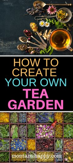How to create your own tea garden with ideas on what to plant and other design resources growing your own tea has never been easier and you ll save money at the same time teagarden teagardenplants teagardendesign herbalgarden how to save seeds Unique Garden, Herb Garden Design, Organic Gardening, Gardening Tips, Vegetable Gardening, Gardening Shoes, Beginners Gardening, Kitchen Gardening, Garden Compost