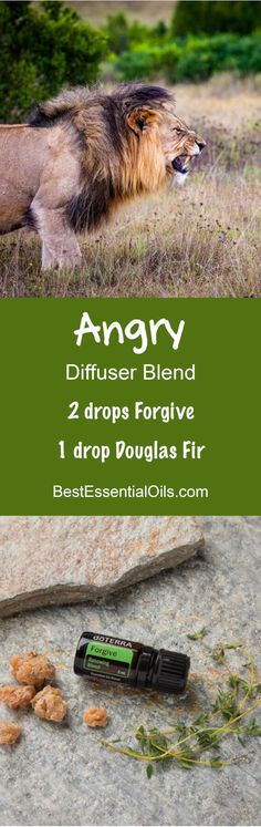Angry doTERRA Diffuser Blend