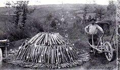vieux métiers forestiers : Le charbonnier