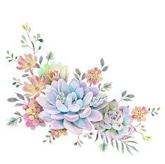 Ideas Cactus Succulent Tattoo Watercolor Painting For 2019 Succulents Drawing, Watercolor Succulents, Succulents Diy, Watercolor Flowers, Watercolor Tattoo, Watercolor Paintings, Succulents Wallpaper, Indoor Succulents, Painting Tattoo