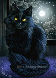 Peace Irina Garmashova Cats