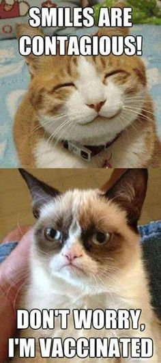 Grumpy Cat is vaccinated .. LOL so weird reminds me of my sister who dosnt smile: