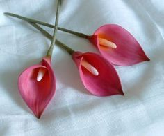 Calla Lily tutorial http://www.duskyroseveiners.co.uk/page_1300084.html Lots of different flower tutorials for gum paste or polymer clay