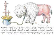 Codex Seraphinianus, le livre le plus étrange du monde !   Strangest illustration book of the world !