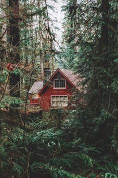 Rustic cottage...I love how secluded this seems.