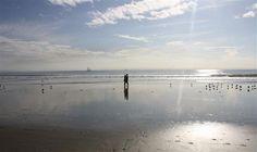 In de zomer met de bolderkar naar het strand en in het voorjaar en de winter heerlijk uitwaaien op de stranden van de Kop van Noord-Holland