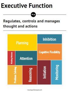 Executive Function Primer