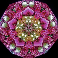 Kaleidoscope Unique Art Bougainvillea Flower by judithpaulscopes Fractal Design, Mandala Design, Mandala Art, Fractal Art, Kaleidoscope Images, Medicine Wheel, True Art, Glass Paperweights, Visionary Art