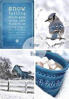 moodboard - winter blues