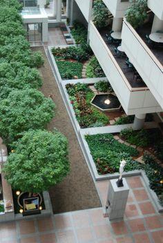 Interior Plants Interiorscapes, Inc