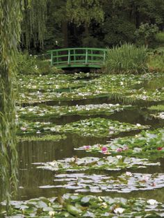 Nov 2019 - Photographic Print: Japanese Bridge and Lily Pond in the Garden of the Impressionist Painter Claude Monet, Eure, France by David Hughes : Spring Aesthetic, Nature Aesthetic, Aesthetic Green, Aesthetic Japan, Claude Monet, Images Esthétiques, Cottage In The Woods, Lily Pond, Pretty Pictures